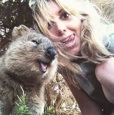 Say goodbye to boring selfies. The Quokka Selfie is the cutest trend in Australia right now. Happy Animals, Animals And Pets, Cute Animals, Funny Animals, Selfies, Cute Creatures, Beautiful Creatures, Cool Pets, Geek Culture