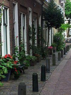 Geveltuin Haarlem