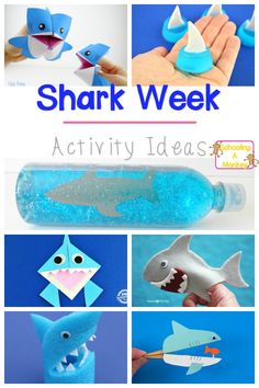 Need activity ideas for shark week? These shark week activities are perfect shark activity ideas for kids of all ages! Sharks have never been more fun!