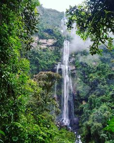 ▷ 15 Planes cerca a Bogotá | Destinos de naturaleza y cultura Countries Of The World, Flora, Waterfall, To Go, Tropical, America, Country, Places, Photography