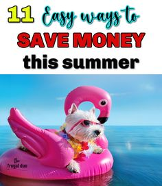 Ready for some summer fun but not looking forward to blowing your budget? Here are 11 easy ways that you can save money this summer while STILL saving money and sticking to your budget. Ways To Save Money, Money Tips, Money Saving Tips, How To Make Money, Frugal Living Tips, Frugal Tips, Family Game Night, Family Games, Managing Money