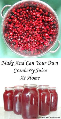 To Make And Can Your Own Cranberry Juice At Home Make and can your own cranberry juice at home. It's so much better than store bought.Make and can your own cranberry juice at home. It's so much better than store bought. Healthy Juices, Healthy Drinks, Detox Drinks, Mojito, Smoothie Recipes, Smoothies, Juice Recipes, Cranberry Recipes Healthy, Top Recipes