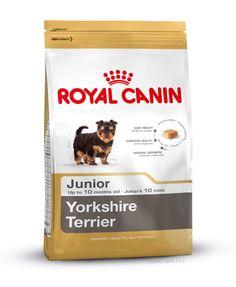 Alleinfuttermittel speziell für den #Yorkshire #Terrier - #Welpen bis zum 10. Monat. Die spezielle Rezeptur YORKSHIRE TERRIER ADULT kann zu einem gesunden langem Fellhaar beim Yorkshire Terrier beitragen. Angereichert mit einem angepassten Gehalt an Omega 3-Fettsäuren (EPA & DHA), Omega 6-Fettsäuren, Borretschöl und Biotin. http://www.royal-canin.de/hund/produkte/im-fachhandel/nahrung-fuer-rassehunde/heranwachsende-rassehunde/yorkshire-junior/