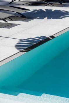 palms poolside