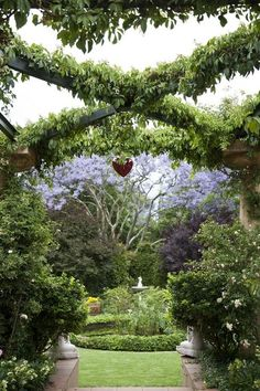 Love, love, love the splashes of purple and lavender.  Such a gorgeous garden