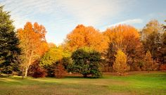 8 Gorgeous Philly-Area Walking and Running Trails to See Fall Foliage. Read more at http://www.phillymag.com/be-well-philly/2015/10/13/fall-foliage-runs-philadelphia/#qoyKyuDpAV2Uvvjg.99
