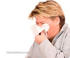 Clinical tests provide strong evidence that spirulina, siberian ginseng and skullcap relieve allergic rhinitis