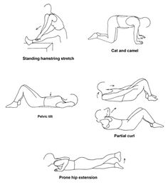 Simple #Exercises for #BackPain relief