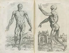It was written by 28-year-old Andreas Vesalius (1514-1564), a professor at the University of Padua. | Look At These Incredible Original Manuscripts By Da Vinci, Mozart, Jane Austen And More