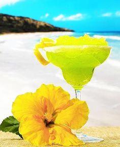 Google Image Result for http://s3.favim.com/orig/46/beach-drink-party-summer-vacation-Favim.com-411458.jpg