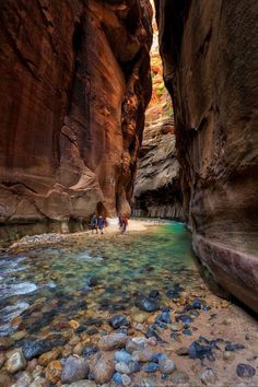 If hiking is your hobby then you must check out this trails Carved throughout millennia by the Virgin River The Narrows in Zion National Park provide breathtaking scenery. Places To Travel, Places To See, Hiking Places, Amazing Places To Visit, Beautiful Places In The World, Nationalparks Usa, Parque Natural, Vacation Spots, Vacation Places In Usa