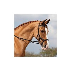 Hitching Post Tack Shop - Rambo Micklem Competition Bridle, $199.00 (http://www.hitchingposttack.com/products/rambo-micklem-competition-bridle.html)