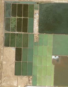 Salt flats, Egypt