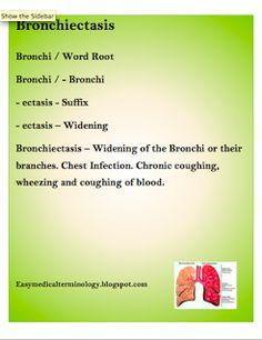 medical terminology root words pdf