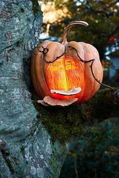 Let the ghouls and goblins knock on everyone else's door while you spend the evening hanging with the fairies. To invite them in transform a pumpkin into a cozy hollow. Creative Halloween Costumes, Halloween Diy, Halloween Decorations, Lotus Pods, Best Pumpkin, Pumpkin Ideas, Martha Stewart Crafts, Outdoor Halloween, Party