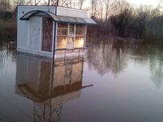 +2 | Карлык. После потопа