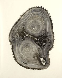Woodcut Imprints by Bryan Nash Gill: This artist rolls ink onto sections of wood to create a print