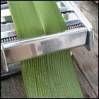 more flax weaving - this is an awesome machine - cutting the flax strips to precision!