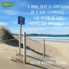 """""""A mind that is stretched by a new experience can never go back to its own dimensions"""" - Oliver Wendell Holmes"""
