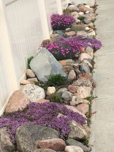 Landscaping Ideas Perfect for Your Side Yard - Side Yard Landscaping, Yard Landscaping, Landscaping Tips and Tricks, Side Yard Gardening, How to Landscape Your Side Yard, Popular Pin #DesertLandscape
