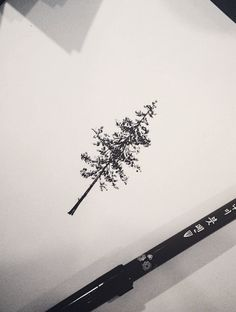 Tree tattoo design. Tattoo artist: doy