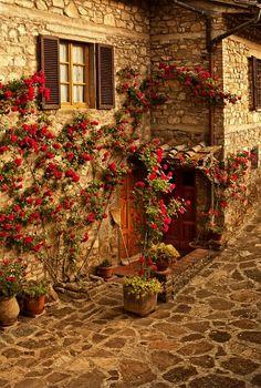 Lucarelli, Toscane