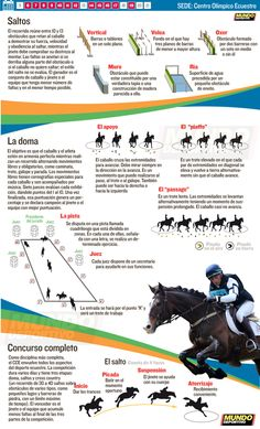 Equitación Río 2016 Madrid, Show Jumping, Horse And Rider, Personal Trainer, Equestrian, Strength, Training