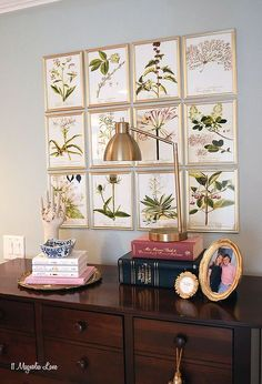 diy inexpensive botanical gallery wall, wall decor