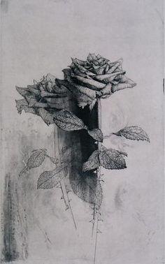 Shinji Ando Prints – Bassett Fine Prints