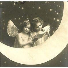 ~Fairies~