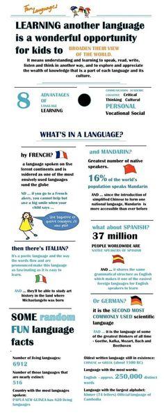 Educational infographic : Rocket Spanish Premium   Learn Spanish Today