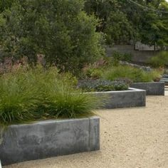 poured concrete planters - Google Search