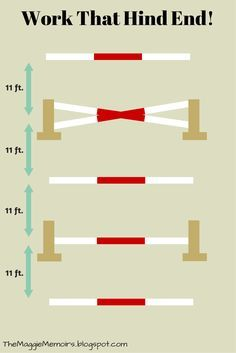 Bounce grid with ground poles, small vertical, and crossrail   a,axing exercise for both rider and horse