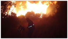 Hatay'da aynı zaman diliminde çıkan orman yangınları paniğe neden oldu. Hatay'da yangın nedeniyle 1 mahalle tahliye edildi.