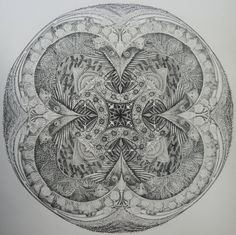Sclerophyll Forest - Susan Sparks  Graphite on Cotton Rag Paper  Image size 50cm diameter