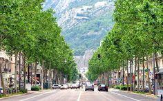 El Blog de La Tabla: Grenoble: Una valla por un árbol