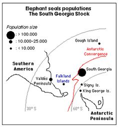diagram of a geographic frontier google search diagrams rh pinterest com Elephant Seal Adaptations Elephant Adaptations