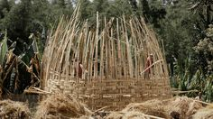 Dorze Chencha Woven Bamboo Houses | Dorze Chencha  - Ethiopia - Woven Bamboo House (8)