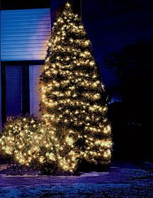Pin On Decorate W Lights For Home