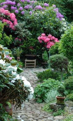 30 Affordable Frontyard and Backyard Garden Landscaping Ideas Landscape Design, Garden Design, Desert Landscape, The Secret Garden, Small Backyard Landscaping, Landscaping Ideas, Garden Cottage, Shade Garden, Dream Garden