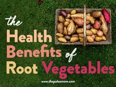 In this week's new post, I get to the root of how root veggies benefit our health. Hayuck, see what I did there? Okay, puns aside, root veggies really are a boon to our health. #rootveggies #guthealth #nutrientdensity #nutrivore Paleo Mom, Lactobacillus Acidophilus, Purple Sweet Potatoes, Root Vegetables, Gut Health, Health Benefits, Vitamins, Puns