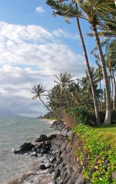 Kihei Maui HI oceanfront homes and properties for sale 96753