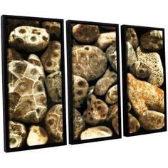 ArtWall Kevin Calkins Petoskey Stone Collage 3-Piece Floater Framed Canvas Set, Size: 36 x 54, Black