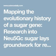 Sugar Consumption, Research, Diets, Cancer, Map, History, Cooking, Search, Kitchen
