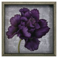 Love the deep purple; feeds my obsession for dark colors