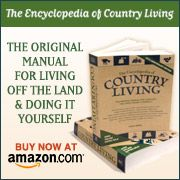 Suggested Vegetables and Varieties Suitable for Container Gardening + care and feeding of them. » The Homestead Survival