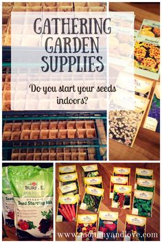 Gathering Garden Supplies: Do You Start Your Seeds Indoors? | www.mommyandlove.com