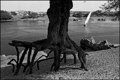 EGYPT—The River Nile, 1992.  © Ferdinando Scianna / Magnum Photos