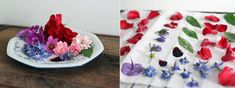 Machen Sie Ihre Blüten haltbar. Kandieren ist eine wunderbare Technik. Hier finden Sie das Rezept für kandierte Blüten!