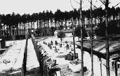 Part of the fence of concentration camp Wöbbelin.